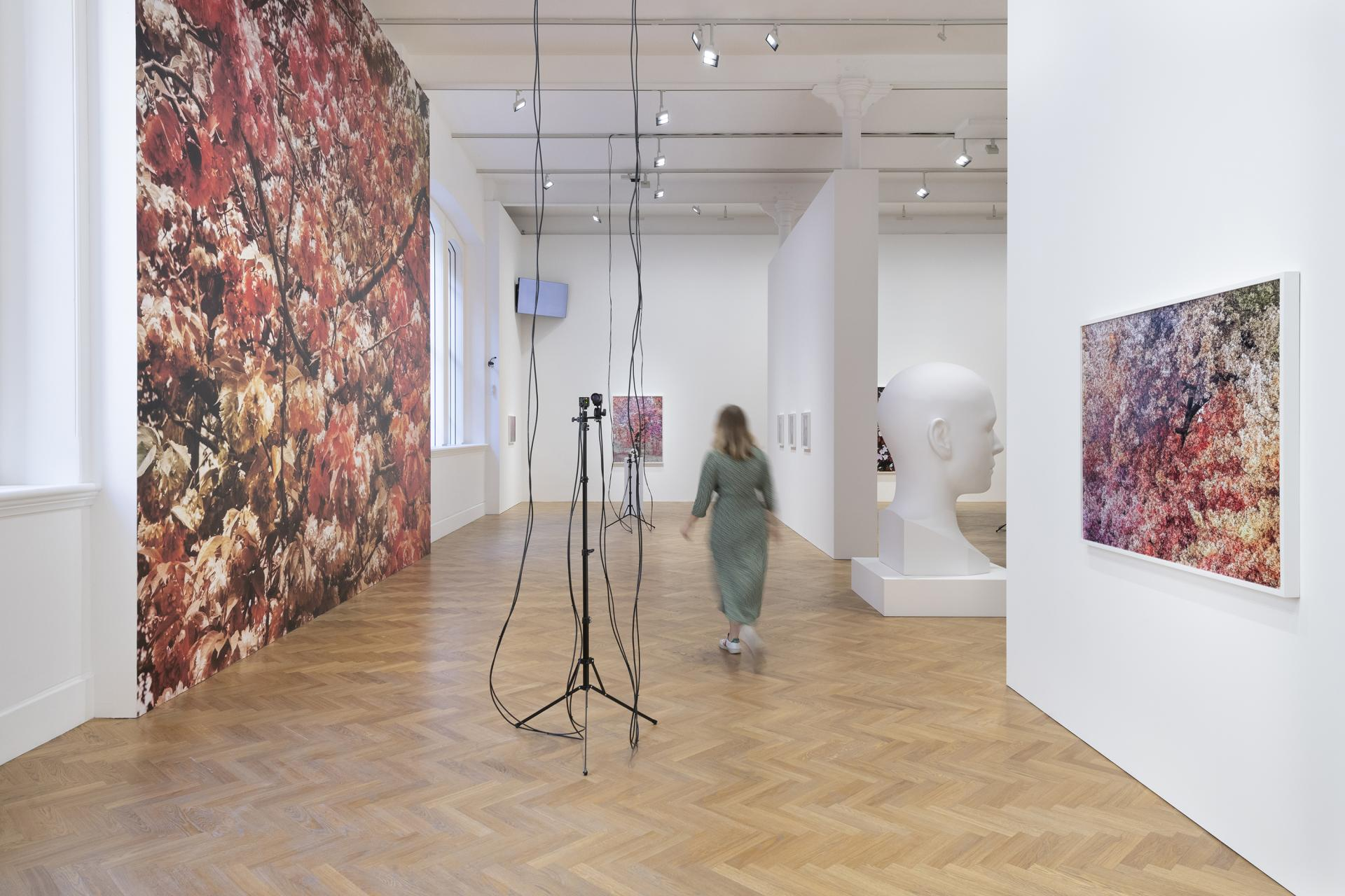 Installation view of Trevor Paglen: Bloom, Pace Gallery, 6 Burlington Gardens, London, September 10 – November 10, 2020.