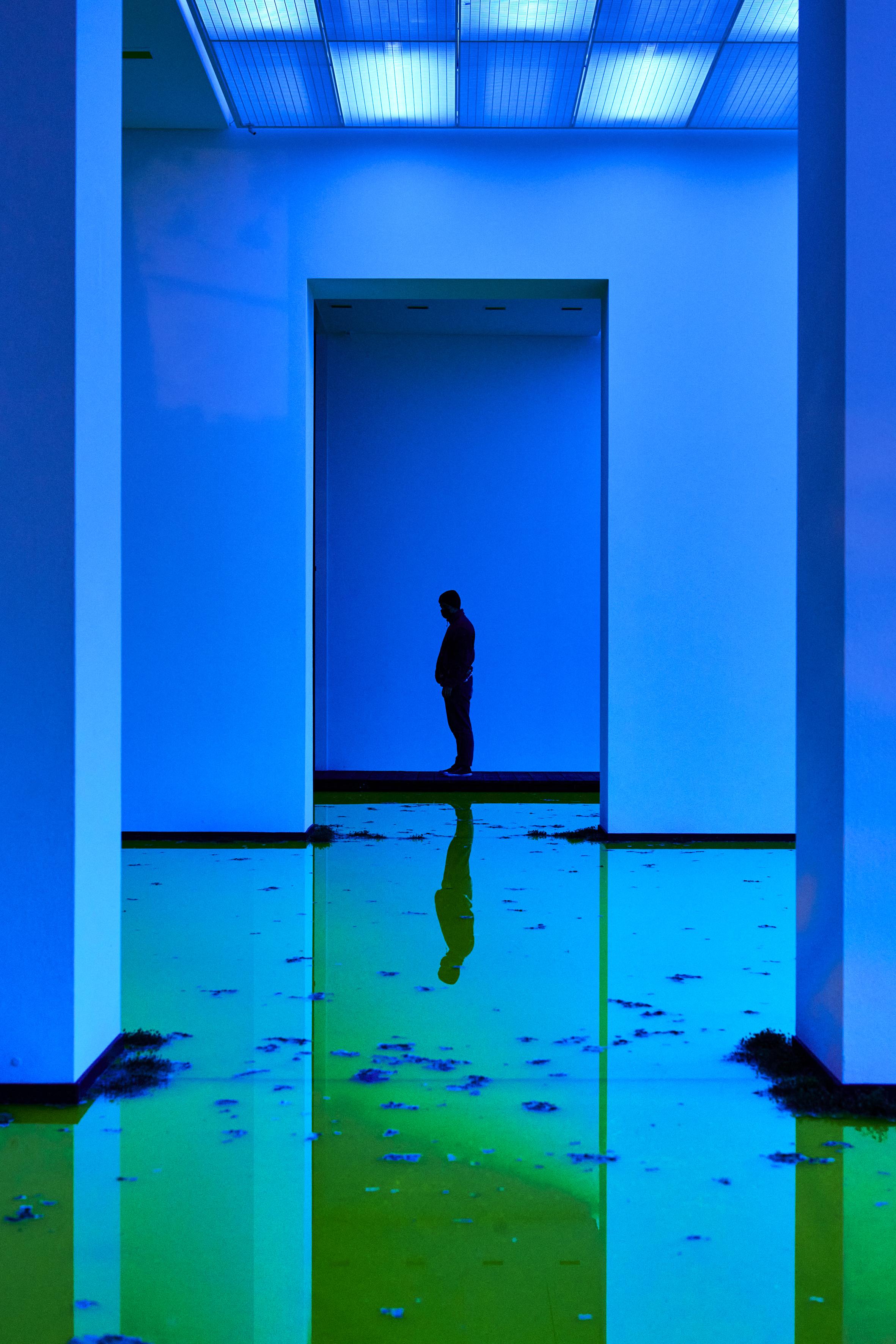 Olafur Eliasson, Life, 2021. Installation view: Fondation Beyeler, Riehen/Basel, 2021. Courtesy of the artist; neugerriemschneider, Berlin; Tanya Bonakdar Gallery, New York / Los Angeles. © 2021 Olafur Eliasson. Photo: Mark Niedermann