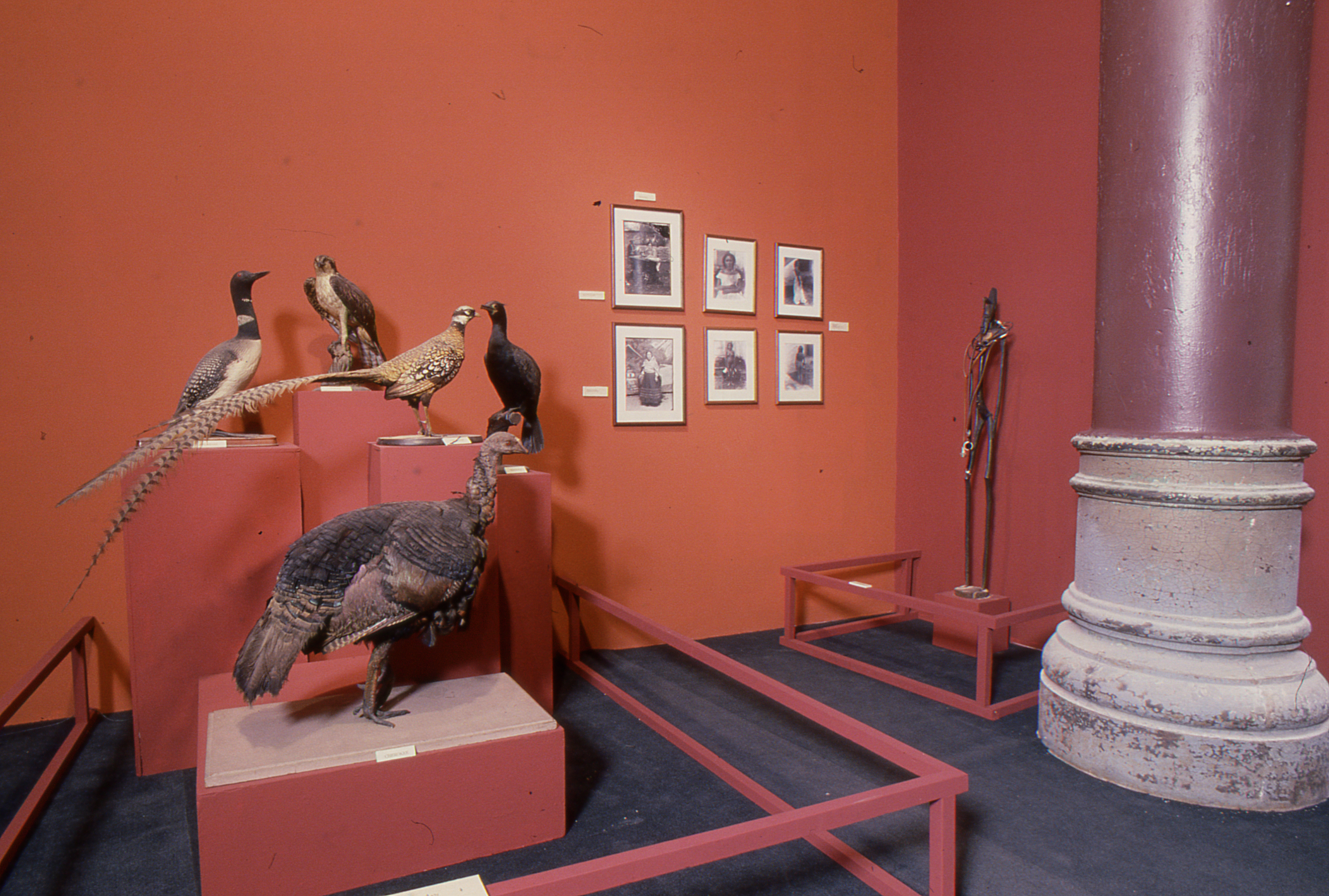 Installation shot of Fred Wilson, 'The Other Museum,' at White Columns, May 18-June 12, 1990. Image courtesy of White Columns.